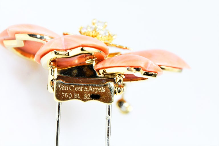 Van Cleef & Arpels Rose De Noel Flower Coral Medium Brooch, Yellow Gold, Diamond For Sale 4