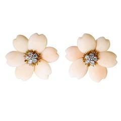 Rare Angle Skin Coral French Van Cleef & Arpels Rose de Noel Earclips
