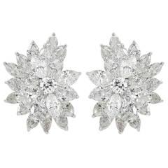 15 Carat Diamonds and Platinum Spray Earrings
