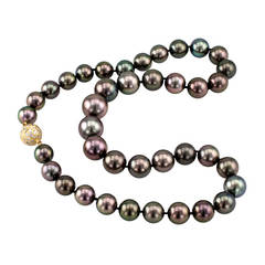 Black Tahitian Cultured Pearl Necklace