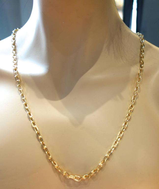 Long Gold Chain 4