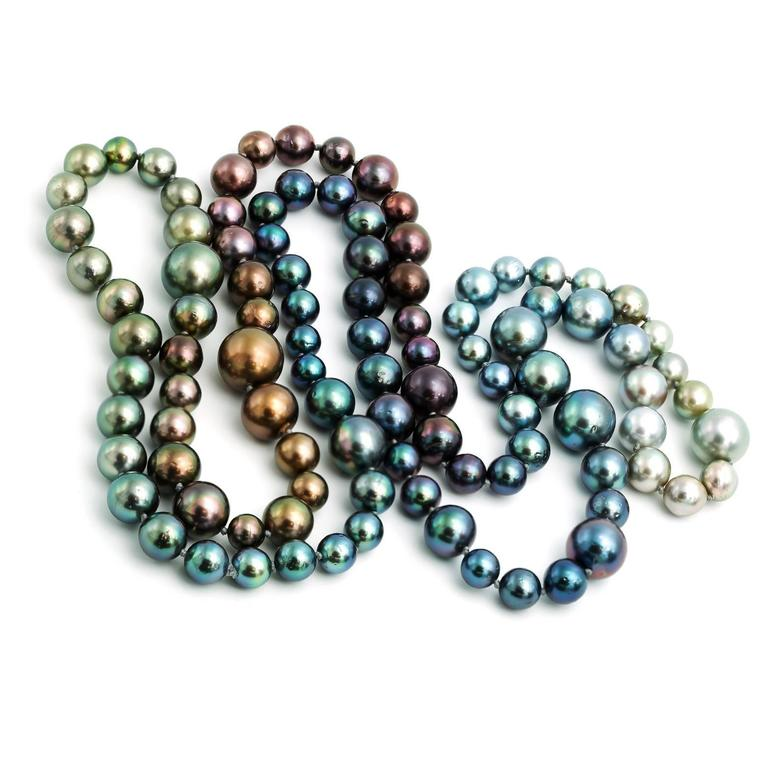 Long Tahitian South Sea Rainbow Pearl Necklace in Every Natural Color In Excellent Condition In Berkeley, CA