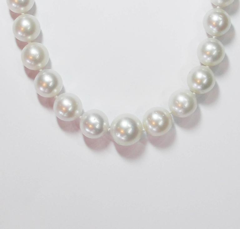 South Sea Pearl Necklace For Sale 1