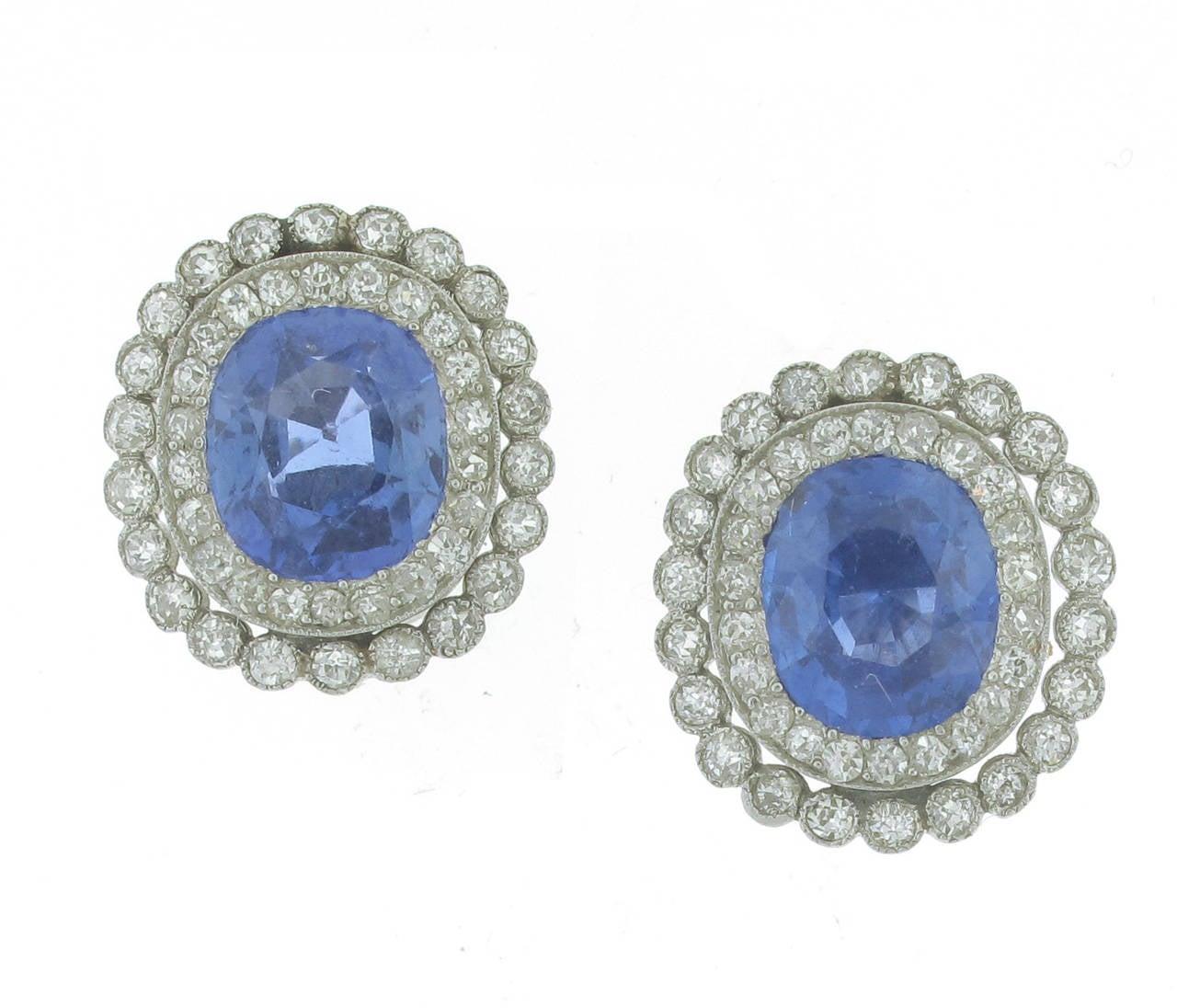 Ceylon Sapphire And Diamond Stud Earrings
