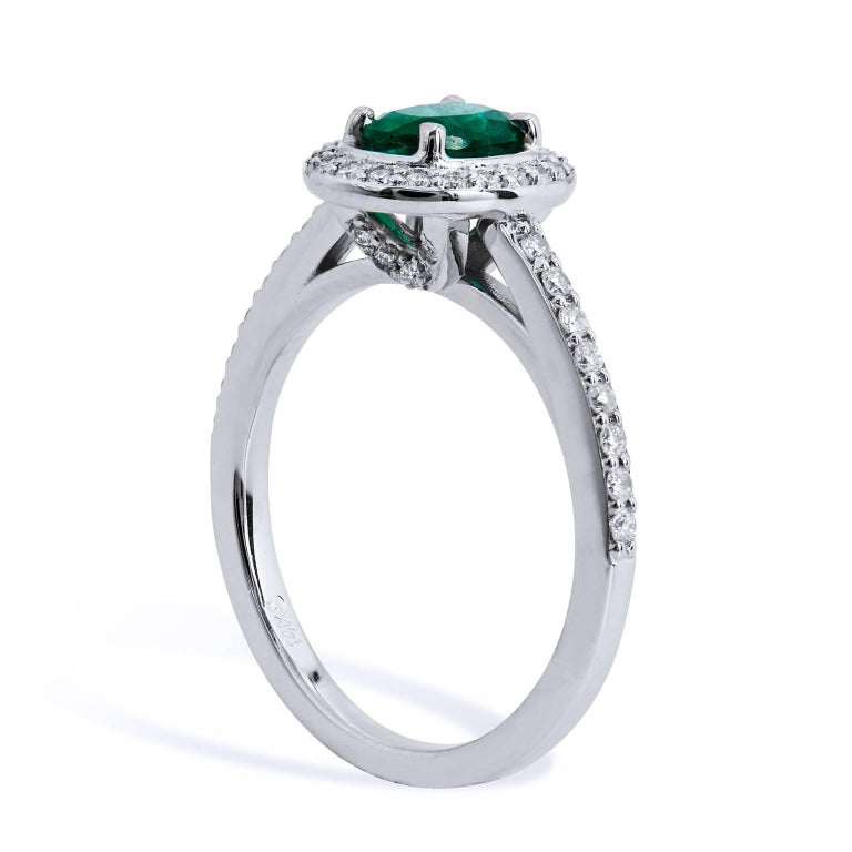 14 karat white gold forms the base for this luscious handmade H & H emerald and diamond ring. Taking center stage is a 0.64 carat oval cut Zambian Emerald displaying a vivid green hue. Clutching the center gemstone and trailing down the shank