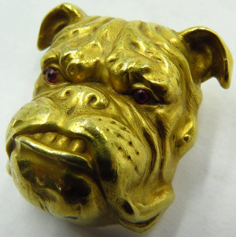 Fantastic Victorian Detailed Gold Bulldog Pin With Cabochon Cut Ruby Eyes 2