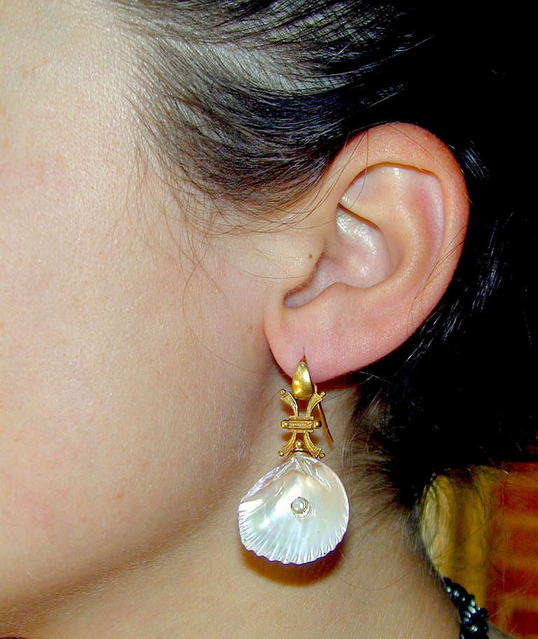 Antique Shell Pearl Gold Earrings 10