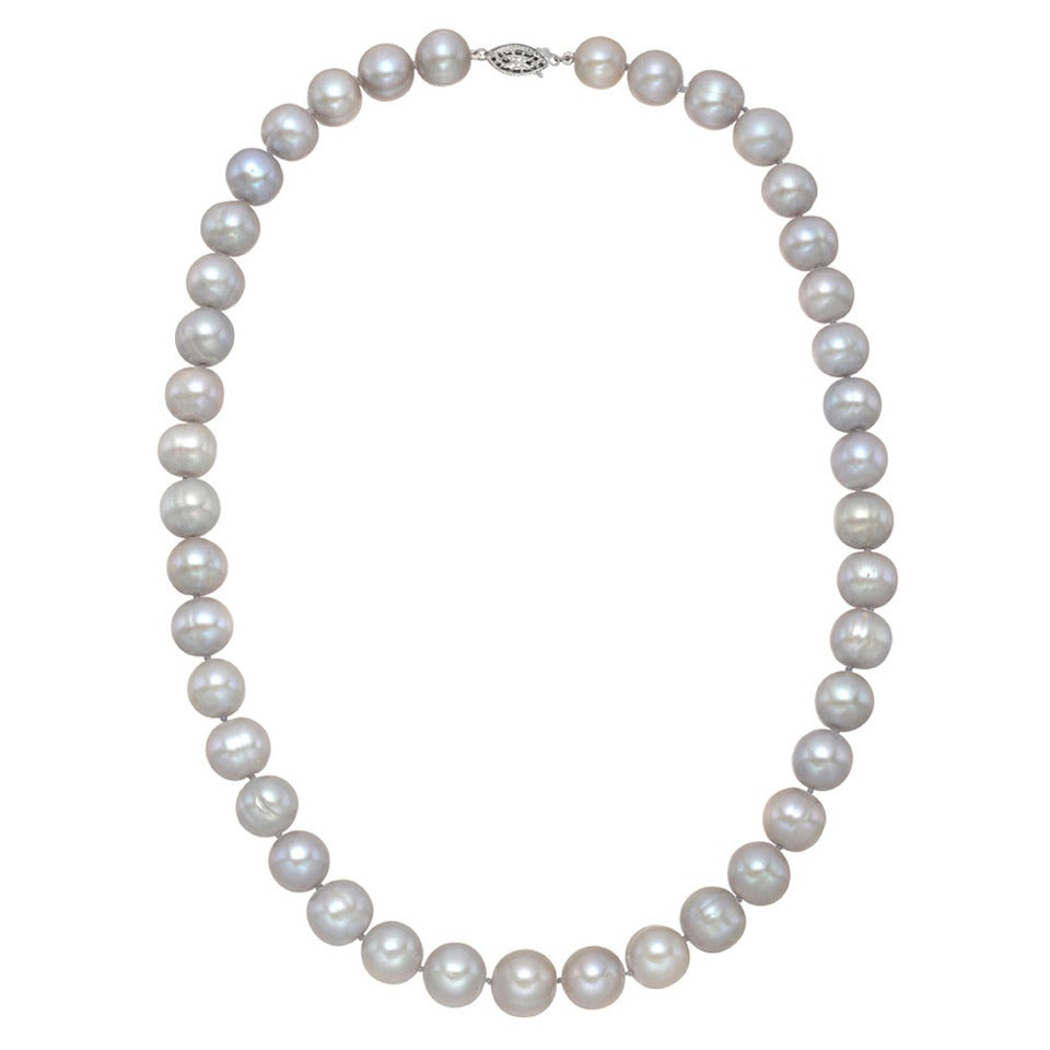 ​Tahitian Pearl Necklace with Sterling Silver Clasp For Sale