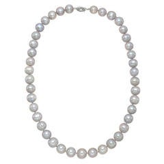 Tahitian Pearl Necklace with Sterling Silver Clasp