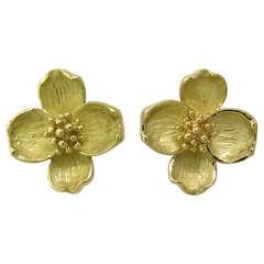 Tiffany & Co Gold Dogwood Flower Earrings