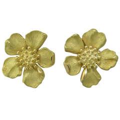 Tiffany & Co Wild Rose Flower Gold Earrings