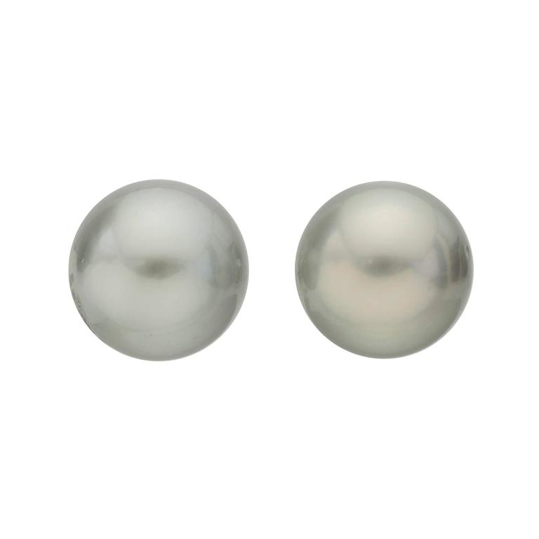 Tahitian Pearl Stud Earrings 1