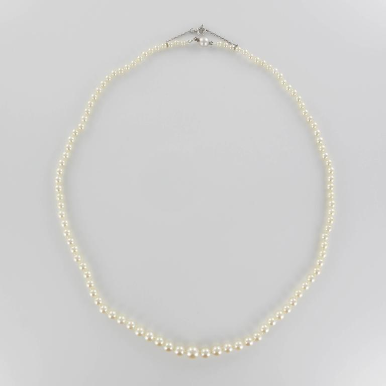 1930s Japanese Cultured Round White Pearl Necklace For Sale 1