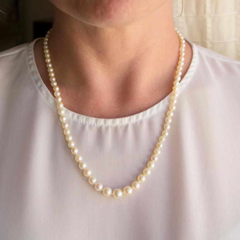 This pearl necklace is composed of a strand of Japanese cultured pearls which are held together by an 18K yellow gold clasp.   Diameter of the pearls: 4/4,5 to 8 / 8,5 mm. Overall length: 54,5 cm. Total weight: approximately 22,1 g.  The necklace