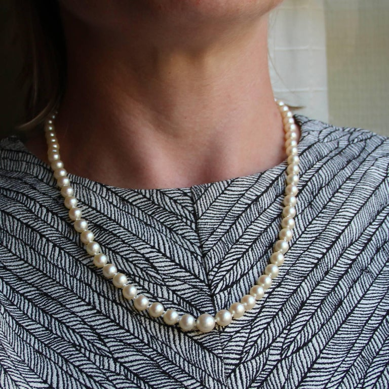 Retro French 1950s Japanese Cultured Pearls Chocker Necklace For Sale