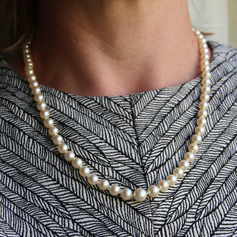 Necklace made of cultured pearls of Japan, presented in fall. The 18 carat rose gold clasp is olive-shaped and clasp with safety chain. Diameter of the pearls from 5.5/6 to 8.5/9 mm. Total length: 55 cm. Total weight of the pearl necklace: 27.7 g