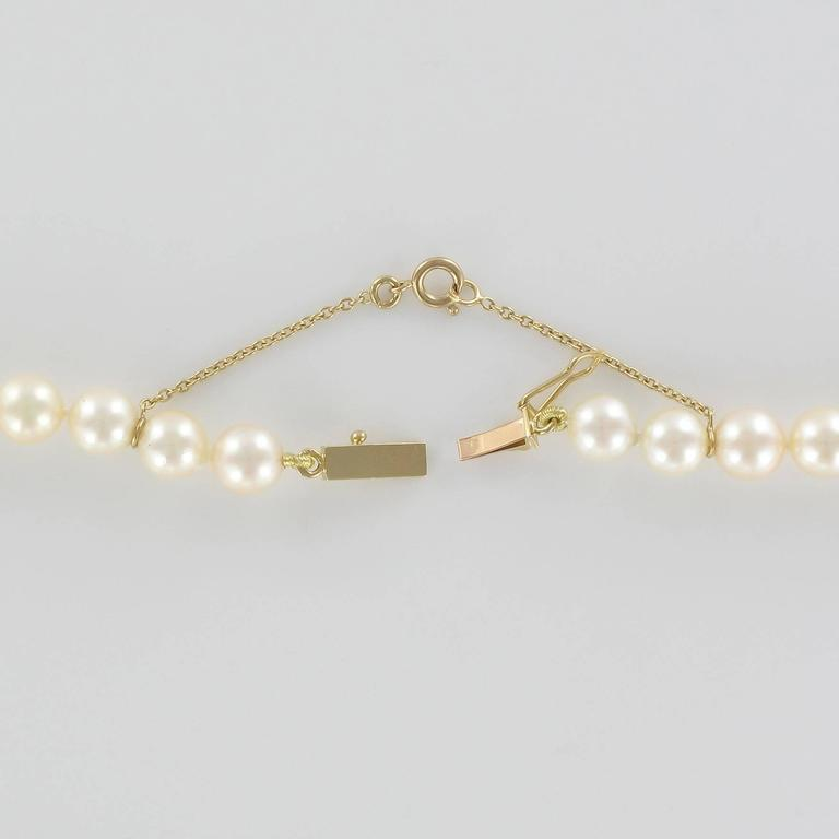 French 1950s Akoya Pearl Choker Necklace For Sale 1