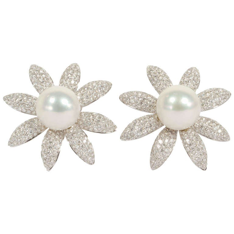 Stunning South Sea Pearl and Diamond Earrings