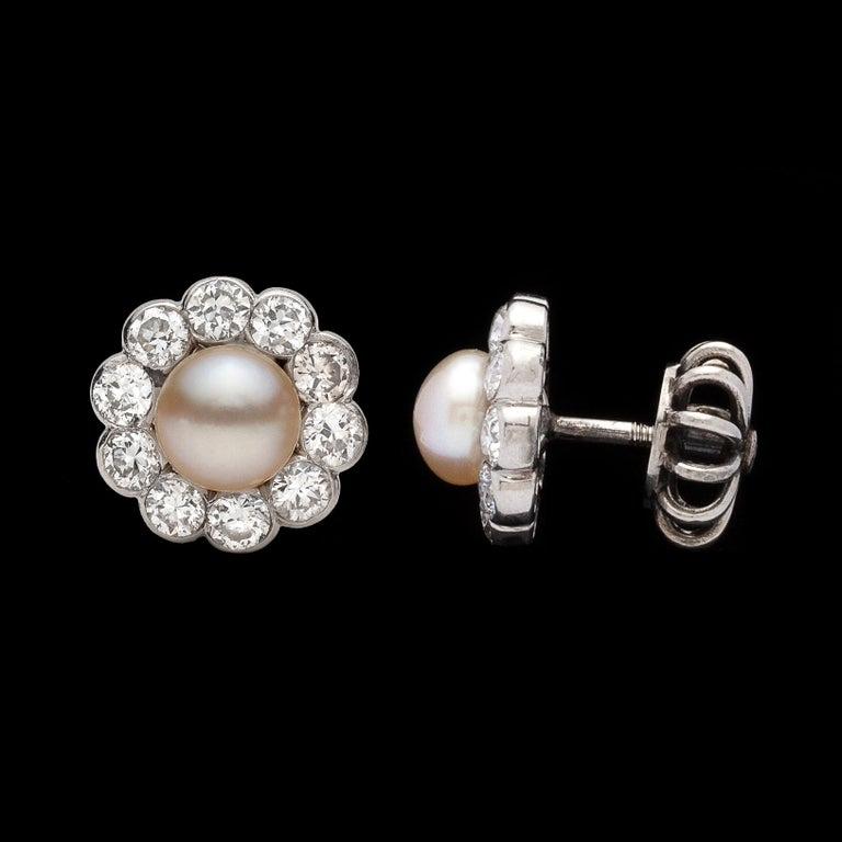 Women's Antique Button Pearl and Diamond Earrings For Sale