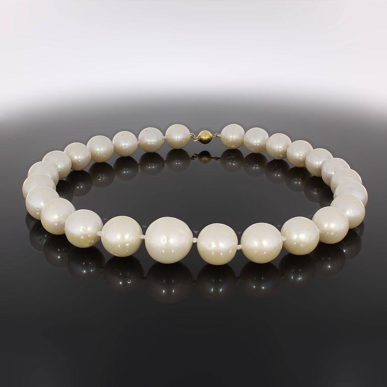One strand of 26 South Sea pearls 12-15 mm in diameter. 