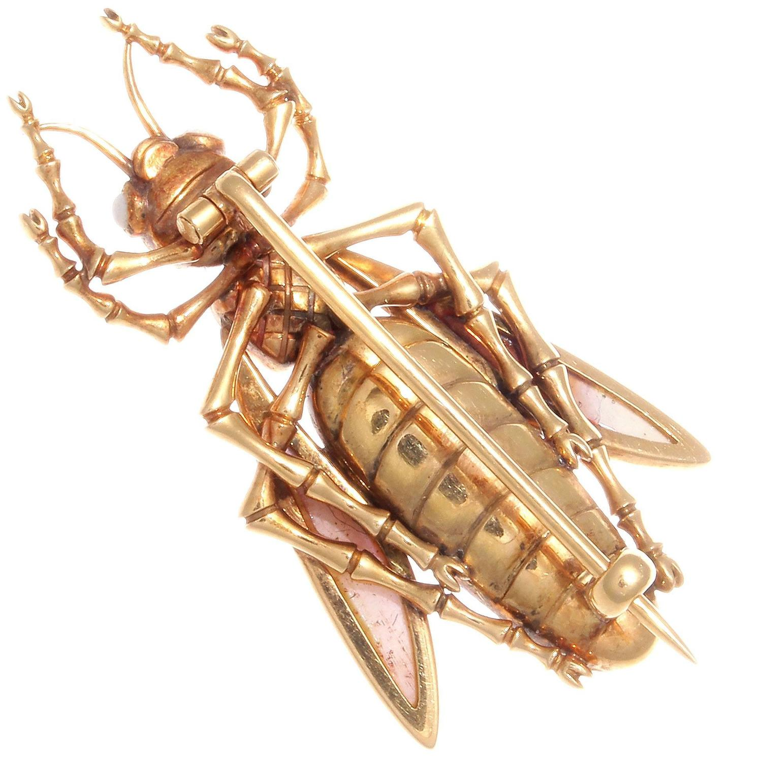 Instyle Decor Com Beverly Hills Beautiful Mother Of Pearl: Coral Sapphire Gold Insect Brooch For Sale At 1stdibs