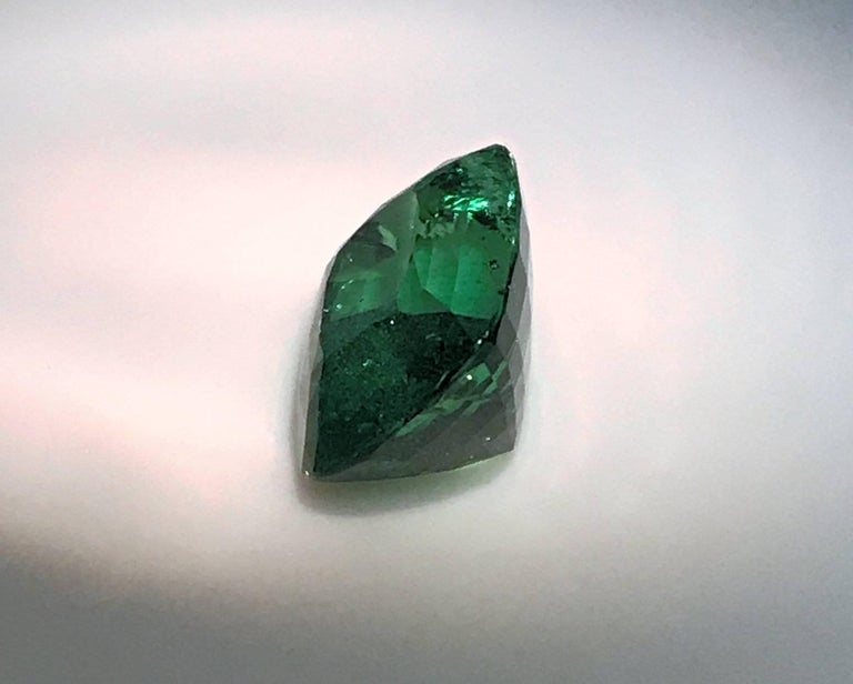Women's or Men's Rare 13.45 Carat Cushion Cut Fine Tsavorite Green Garnet For Sale
