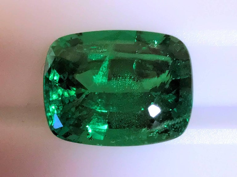 Rare 13.45 Carat Cushion Cut Fine Tsavorite Green Garnet 5