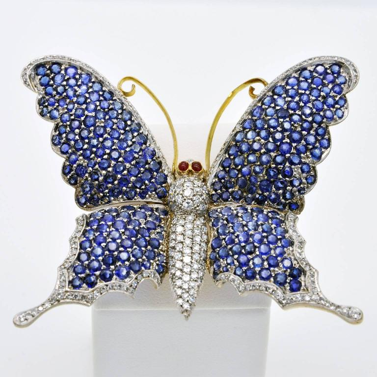 Unique large butterfly brooch 18K gold pavé set with Sri Lankan sapphires and brilliant cut diamonds.