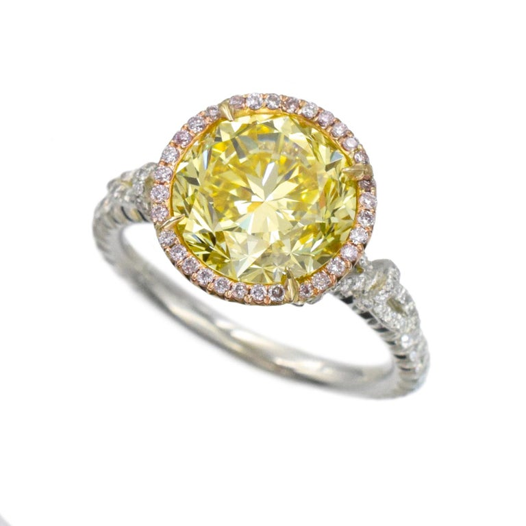 NALLY Vivid Intense Yellow color diamond ring with 3.76 carat center diamond GIA # xxxxxxx Color Fancy Vivid Yellow,  Clarity- VS1 This ring has 74 round brilliant cut diamonds 0.53 carats set in platinum with 81 pink color round brilliant cut