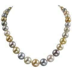 South Sea Multi-Colored Cultured Pearl Necklace