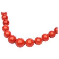 Vivid Reddish Orange Natural Coral Necklace