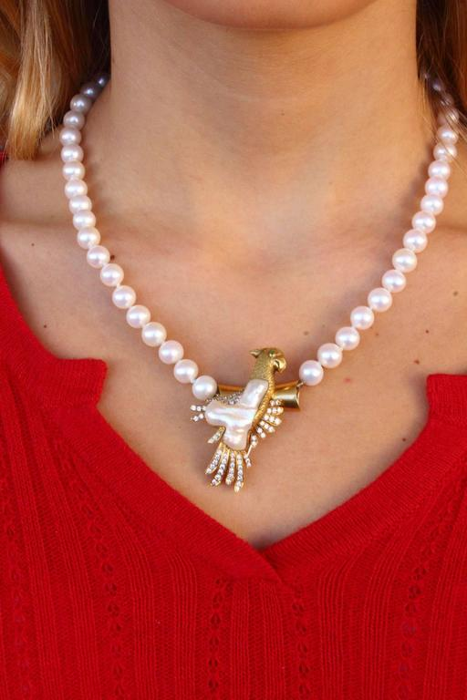 Retro Pearl Necklace and Parrot Gold Brooch/Clasp For Sale