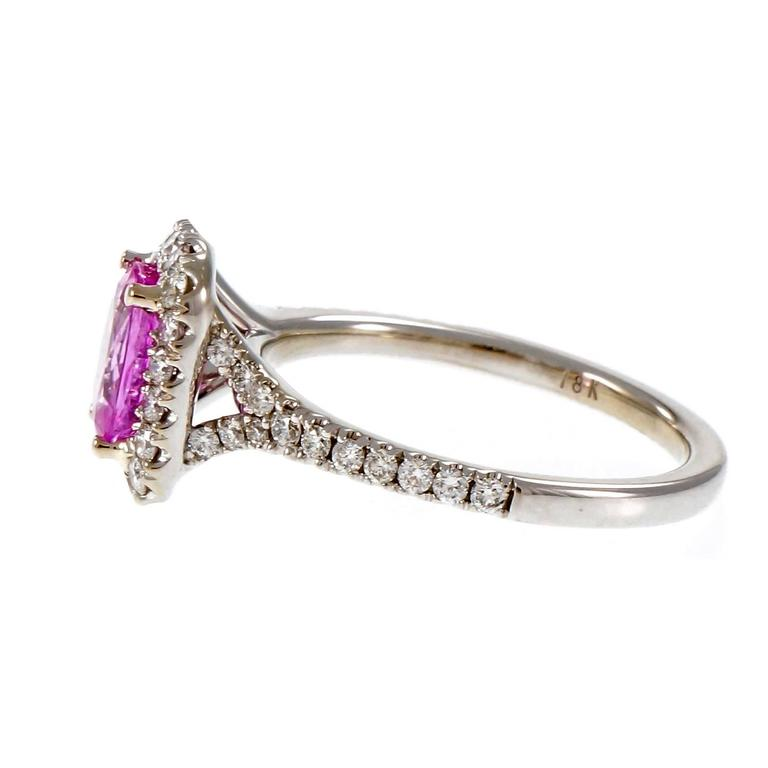 Peter Suchy Hot Pink Sapphire Diamond Halo Gold Engagement Ring  In Good Condition For Sale In Stamford, CT