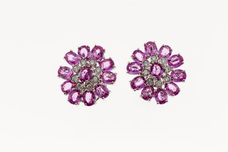 Modern Pink Sapphire Diamond White Gold Cluster Earrings For Sale