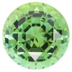 Mint Green Tourmaline Ring Gem 5.00 Carat Unset Round Loose Gemstone