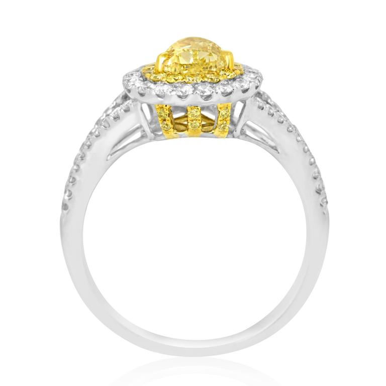 Natural Fancy Yellow Diamond Double Halo Two-Color Gold Ring In New Condition For Sale In NEW YORK, NY