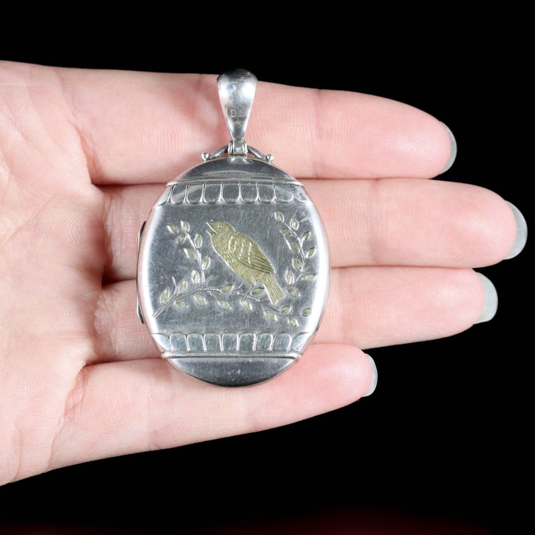 Antique Victorian Large Silver Locket with Gold Bird Dated 1876 For Sale 6