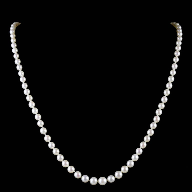 To read more please click continue reading below-  This beautiful antique Pearl necklace is a genuine Victorian piece Circa 1900.   The necklace is adorned with lovely cultured Pearls displaying beautiful Victorian workmanship all round.   Pearls