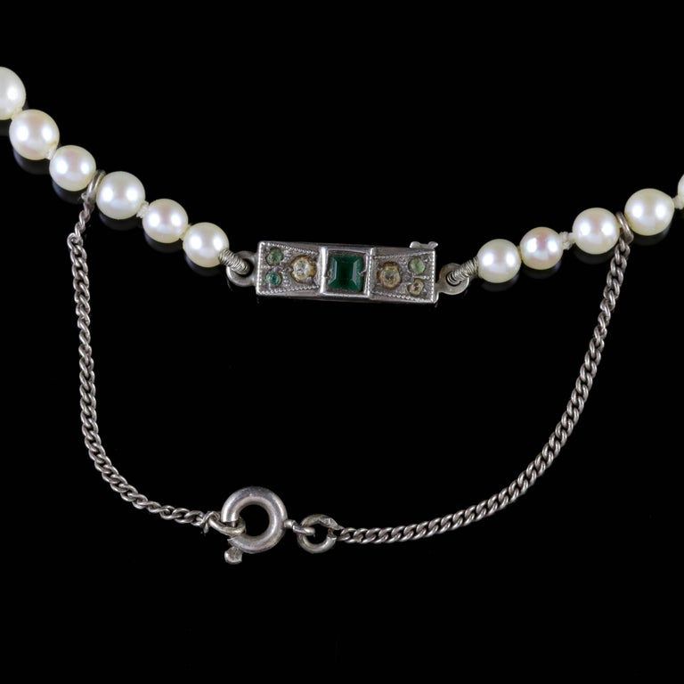 Women's or Men's Antique Victorian Pearl Boxed Necklace, circa 1900 For Sale