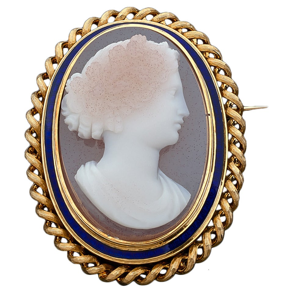 1890s Agate Cameo Enamel Gold Brooch
