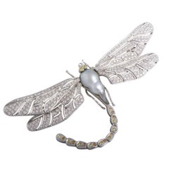 White Yellow and Brown Diamonds and Baroque Pearl Platinum Dragonfly Brooch