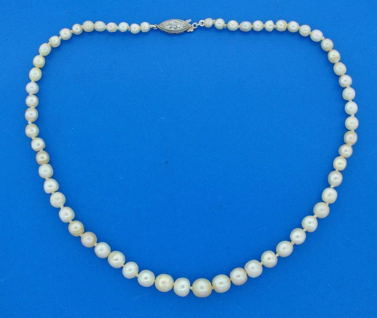 Natural Saltwater Pearl Strand Necklace With Diamond And
