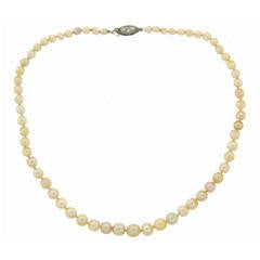 Natural Saltwater Pearl Strand Necklace with Diamond & Platinum Clasp