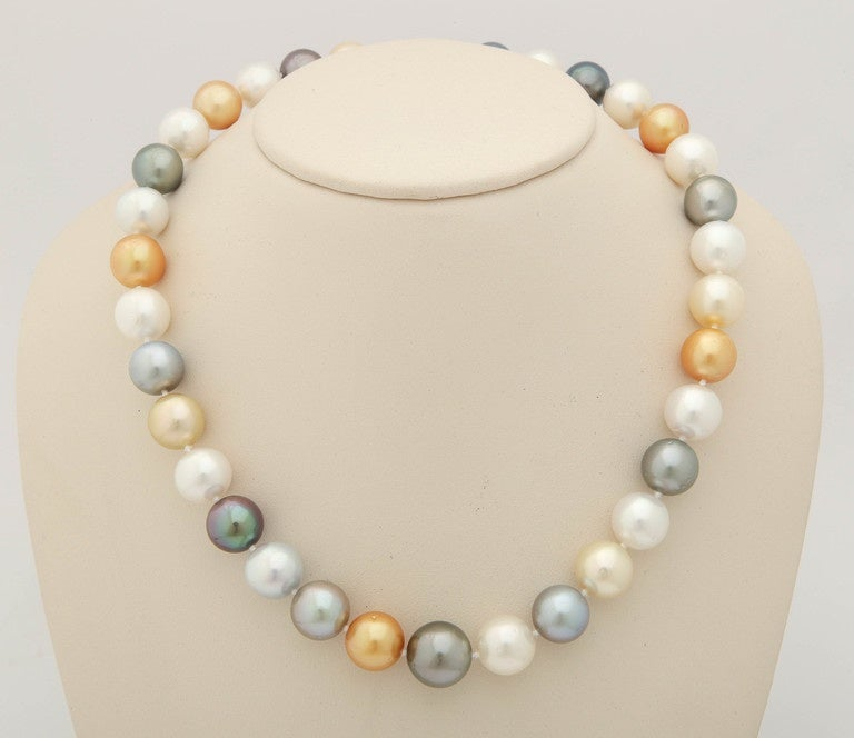 South Sea, Tahitian and Golden Pearl Necklace 2