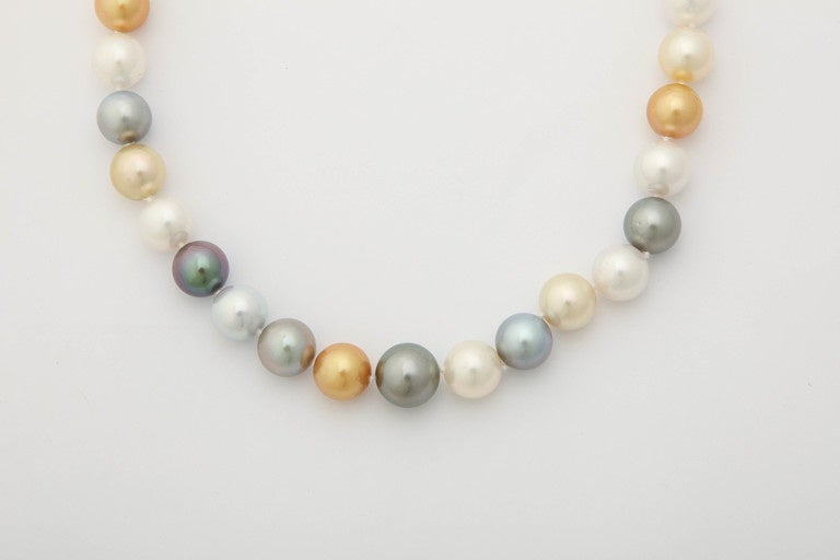 Contemporary South Sea, Tahitian and Golden Pearl Necklace For Sale