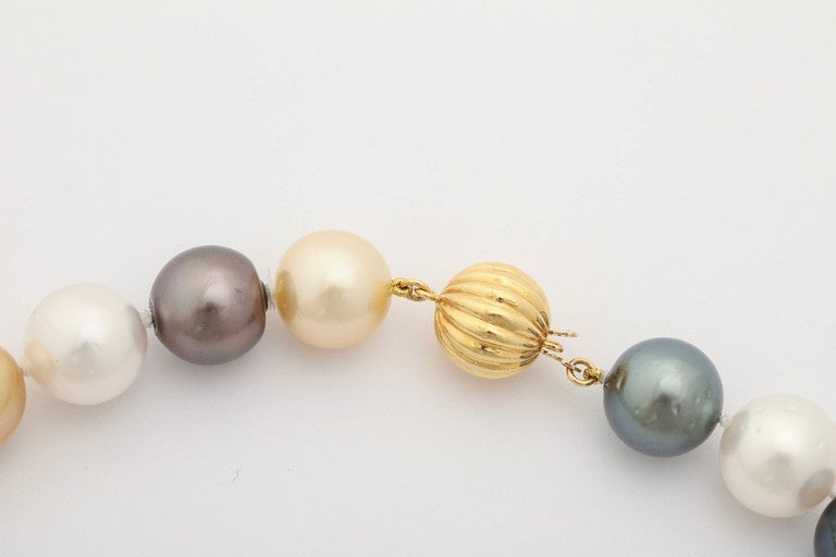 South Sea, Tahitian and Golden Pearl Necklace 4