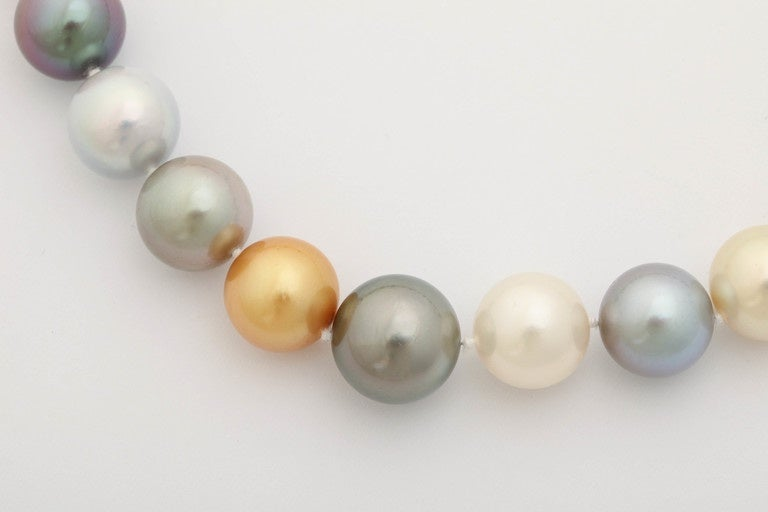 Women's South Sea, Tahitian and Golden Pearl Necklace For Sale
