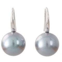 Grey Aubergine Tahitian South Sea Pearl and 18 Carat White Gold Hook Earrings