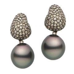 Tahitian Pearl Champagne Diamond Gold Earrings