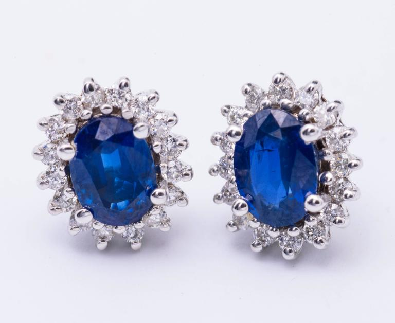 Contemporary Oval Sapphire Diamond Gold Halo Stud Earrings For Sale